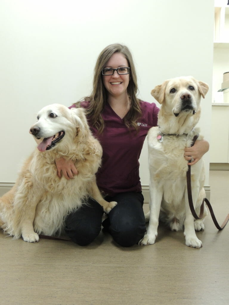 Two dog's on either side of registered veterinary technician