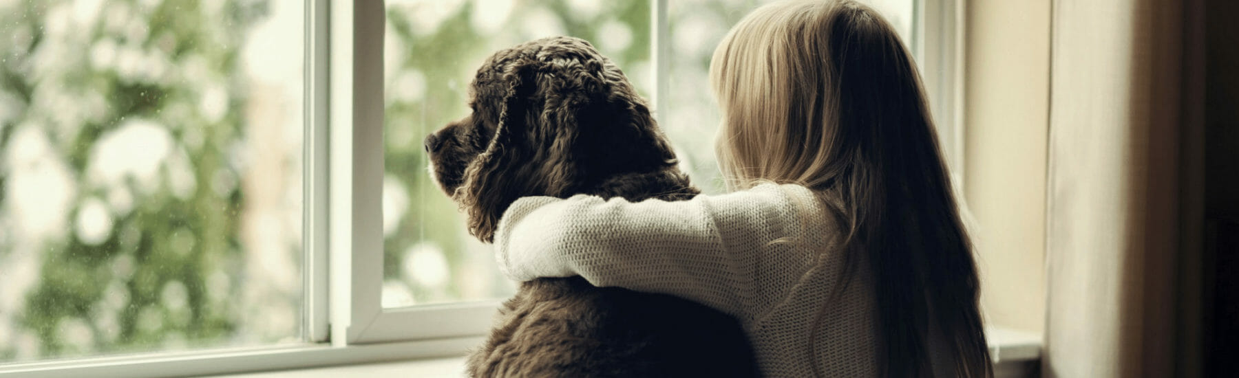 Owner with arm around large black dog looking out of the window together